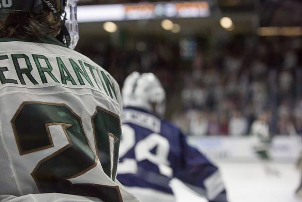 hockey_2015-02-14_629A4756.jpg